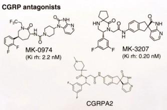 CGRP-Antagonisten in der klinischen Entwicklung