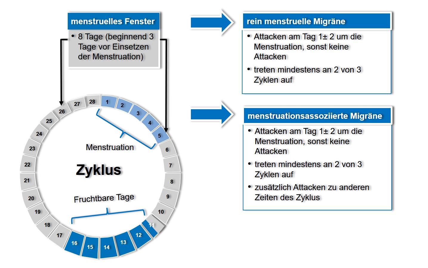 Definition der verschiedenen Formen der menstruellen Migräne